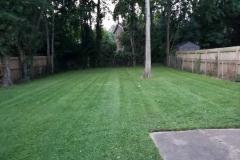 Lawn Care Service-Brentwood, Green Hills, Forest Hills, Nashville